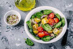 Healthy green salad with spinach, quinoa, yellow and red tomatoes, onions and seeds. On gray background Stock Photos
