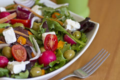 Healthy green salad in white bowl Stock Photography