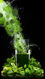 Healthy green vegetable smoothie Stock Image