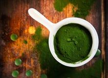 Healthy green young barley and chlorella. Stock Image