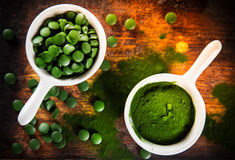 Healthy green young barley and chlorella. Stock Photos