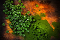 Healthy green young barley and chlorella. Royalty Free Stock Photo