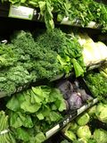 Healthy Greens. Healthy green produce Stock Images