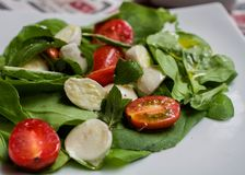 Healthy greens tomato and cheese salada. Close-up on healthy salad made of mozzarella cheese, tomatoes and greens on white plate- healthy eating concept Royalty Free Stock Photography