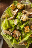 Healthy Grilled Chicken Caesar Salad Royalty Free Stock Images