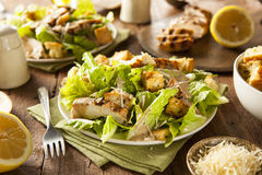 Healthy Grilled Chicken Caesar Salad. With Cheese and Croutons Stock Photos