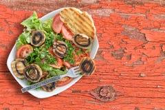 Healthy Grilled Mushroom Salad Royalty Free Stock Photos
