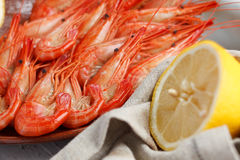 Healthy grilled prawns. Served with a halved lemon and napkin to clean ones fingers during eating Royalty Free Stock Photography
