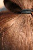 Healthy hair. Healthy shiny pony  bwown hair closeup Stock Photo