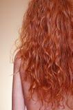 Healthy hair Royalty Free Stock Photo