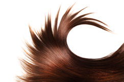Healthy hair Royalty Free Stock Images