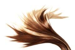 Healthy hair Royalty Free Stock Image