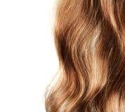 Healthy hair Stock Photos