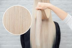 Healthy hair girl blonde backs, white background. Concept treatment care.  royalty free stock photo