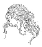 Healthy Hair illustration Royalty Free Stock Images