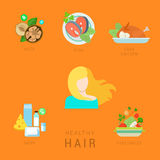Healthy hair lifestyle flat vector infographic diet fitness face. Flat healthy hair lifestyle vector infographics concept. Human face icon with nuts fish eggs Stock Photography