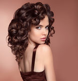 Healthy Hair. Makeup. Beauty brunette portrait. Attractive girl Royalty Free Stock Photography