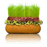 Healthy Hamburger Royalty Free Stock Photography