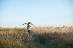 Healthy happy little boy running with kite among grass field in summer royalty free stock image