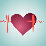 Healthy Heart with cardiogram Royalty Free Stock Photos