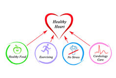 Healthy heart. Diagram of causes of Healthy heart royalty free stock photos