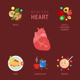 Healthy heart flat vector infographic - diet and fitness. Flat healthy heart lifestyle vector infographics concept. Human organ icon with nuts apple avocado Royalty Free Stock Photography