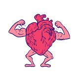 Healthy Heart Flexing Muscle Drawing royalty free illustration