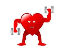 Healthy Heart Illustration Royalty Free Stock Photo