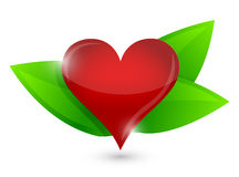 Healthy heart illustration design concept Royalty Free Stock Photo