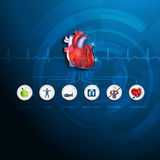 Healthy heart info graphic Royalty Free Stock Photo