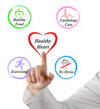 Healthy heart. Presenting diagram of Healthy heart stock photography