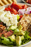 Healthy Hearty Cobb Salad. With Chicken Bacon Tomato Onions and Eggs royalty free stock photography