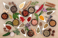 Healthy Herb and Spice Abstract Stock Photos