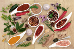 Healthy Herb and Spice Collection Royalty Free Stock Images