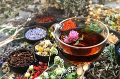 Healthy herbal tea on medicinal flowers and herbs background royalty free stock photography