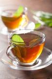 Healthy herbal tea with sage leaf Stock Image