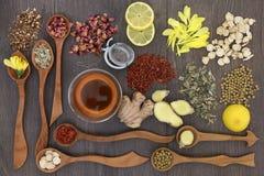 Healthy Herbal Teas Royalty Free Stock Photos