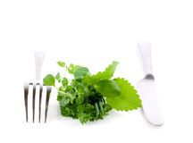 Healthy herbs and cutlery Royalty Free Stock Photo
