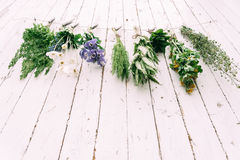 Healthy herbs Royalty Free Stock Image