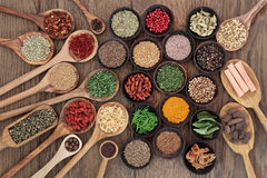 Healthy Herbs and Spices Royalty Free Stock Image