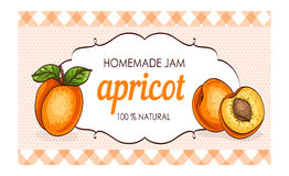 Healthy homemade apricot jam marmalade paper label vector illustration Royalty Free Stock Images