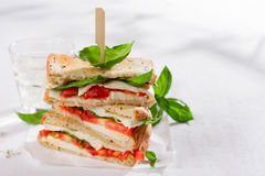 Healthy homemade caprese sandwich Royalty Free Stock Image
