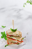 Healthy homemade caprese sandwich Stock Images