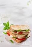 Healthy homemade caprese sandwich Stock Image