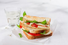 Healthy homemade caprese sandwich Royalty Free Stock Photography