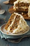 Healthy Homemade Carrot Cake Stock Photography