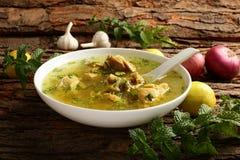 Healthy  homemade chicken soup Royalty Free Stock Photos