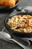 Healthy homemade granola on gray background Stock Images