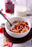 Healthy homemade granola or muesli with oats Stock Photography