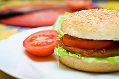 Healthy homemade hamurger Stock Photo